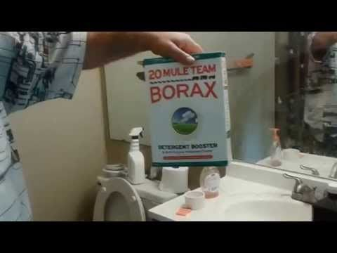 How To Get Rid Of Termites For Good Using Borax    Best Solution Do It
