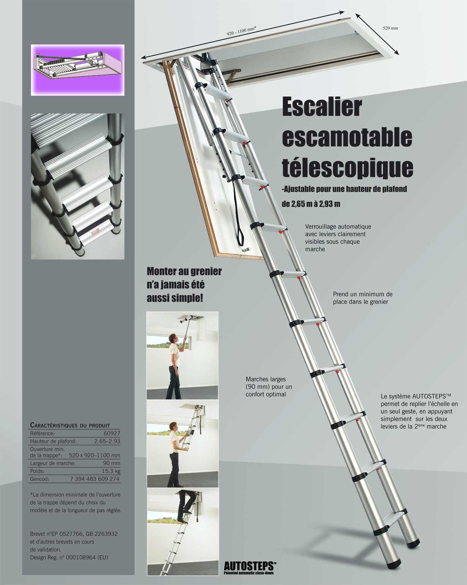 Lovely Echelle Telescopique Mr Bricolage Ladder Architecture Stairs