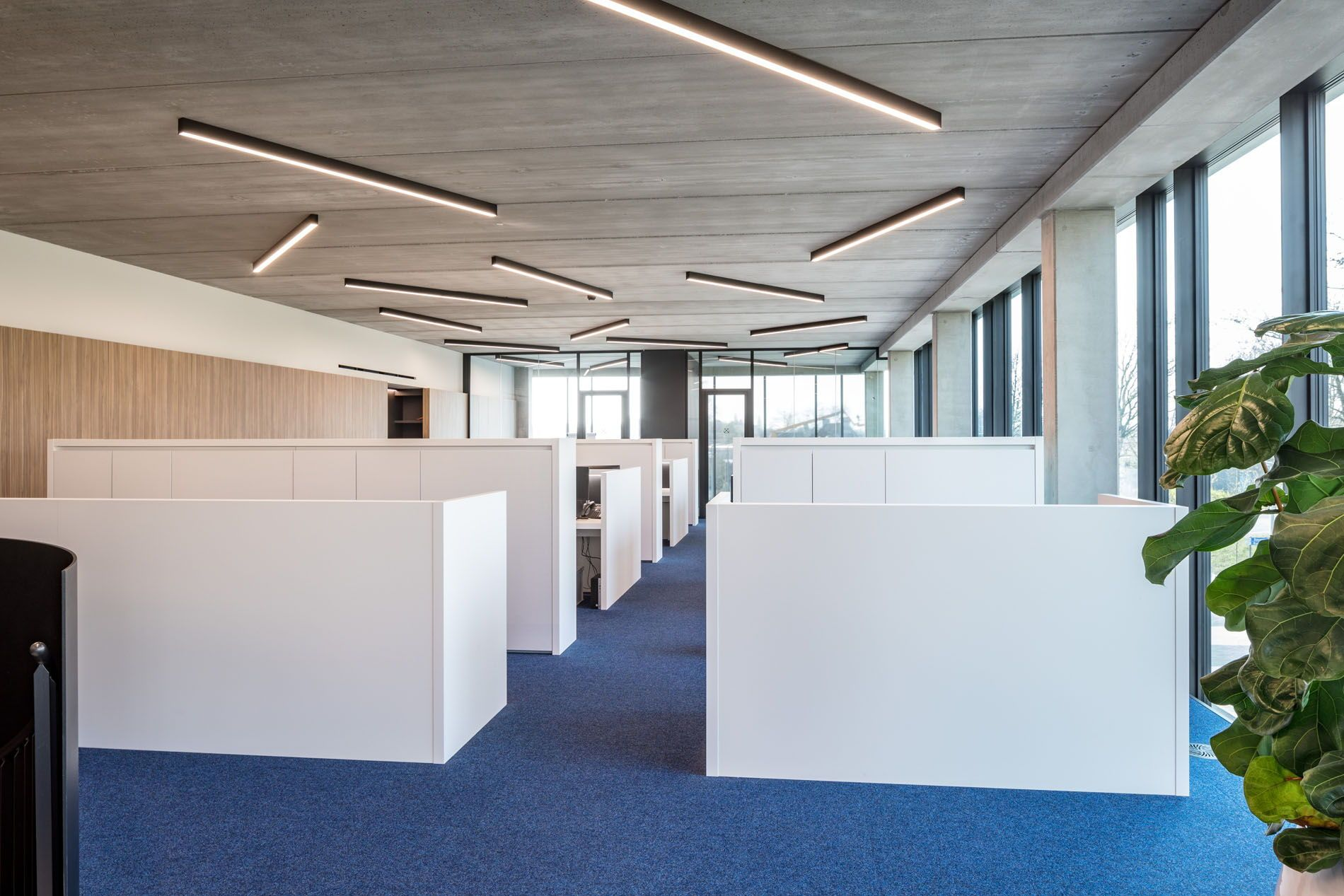 Zoutman Roeselare Interested In Office Or Ceiling Lighting Ideas These Days Interior Des Office Lighting Design Coworking Space Design Residential Design