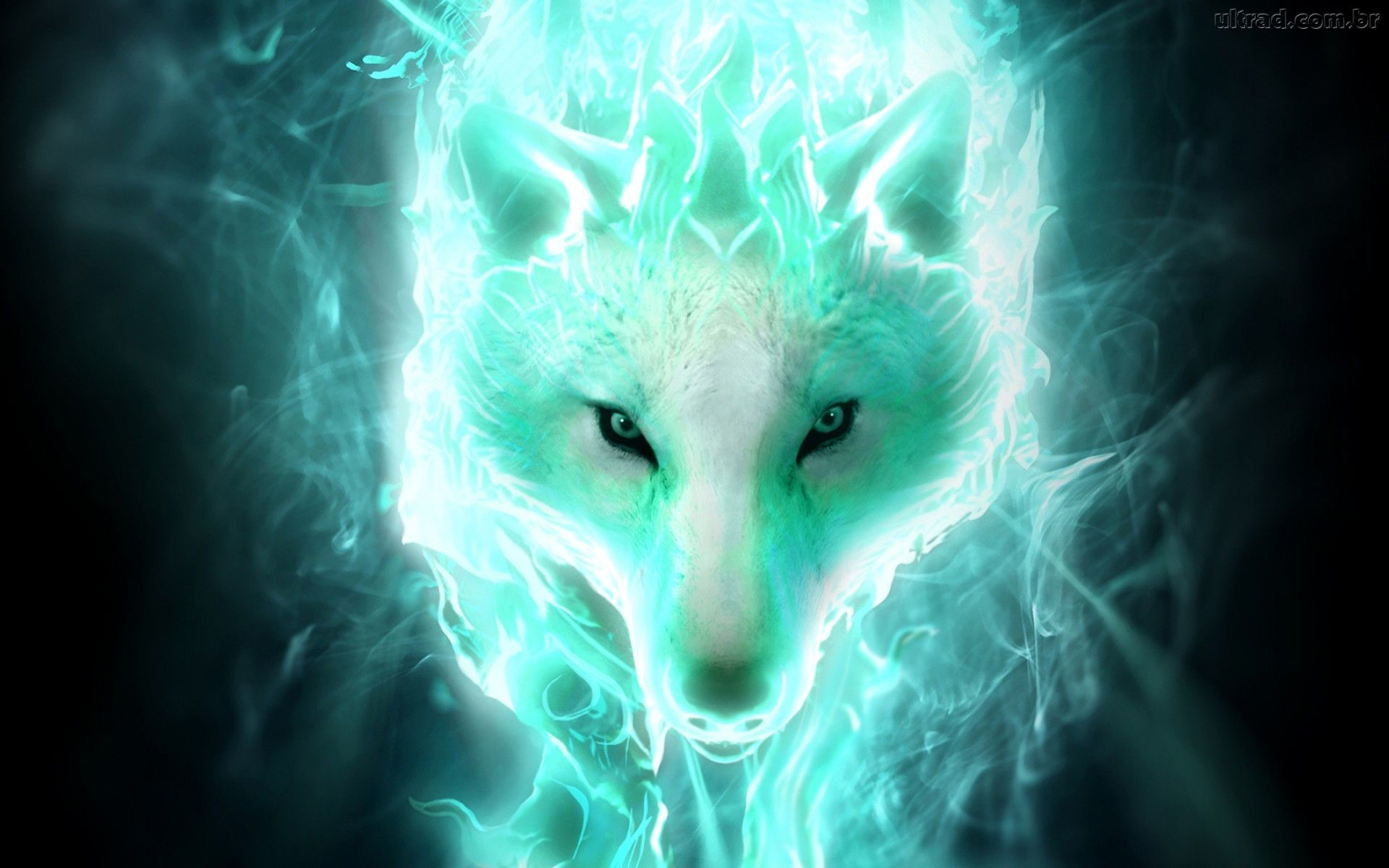 White Spirit Wolf Computer Wallpapers Desktop Backgrounds 1920x1200 Id 553440 Wolf Wallpaper Wolf Background Fantasy Wolf