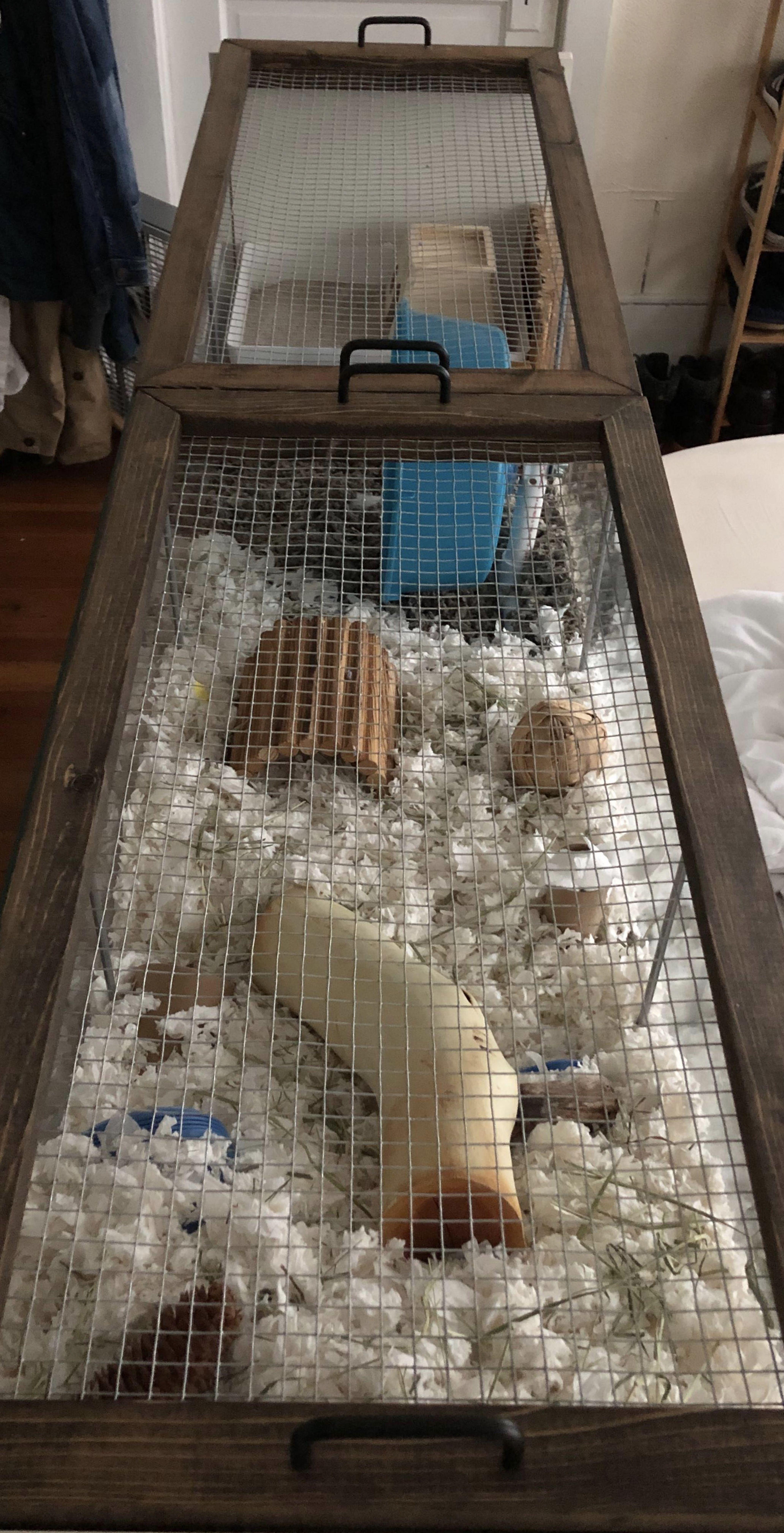 Diy Lid For Ikea Detolf Hamster Diy Hamster Diy Cage Hamster Cages