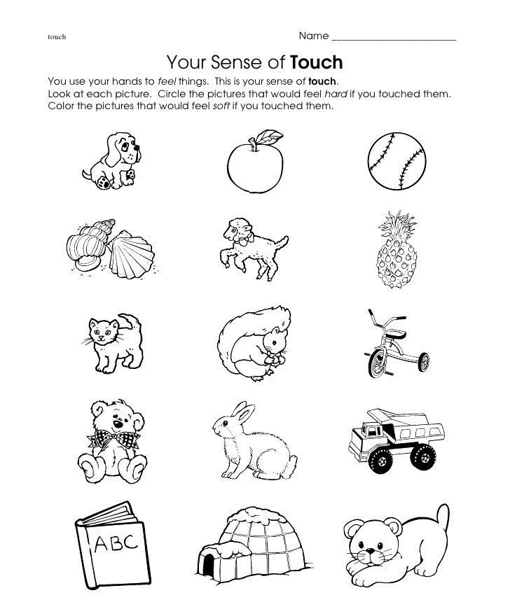 Touch Worksheet Crafts And Worksheets For Preschool Toddler And Kindergarten Senses Preschool 5 Senses Worksheet Kindergarten Worksheets