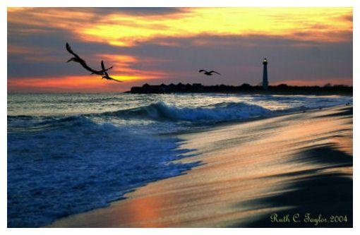 Cape May, NJ - Sunset Beach