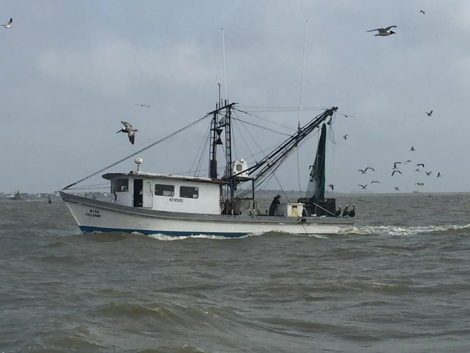 shrimp boat galveston bay galveston pinterest