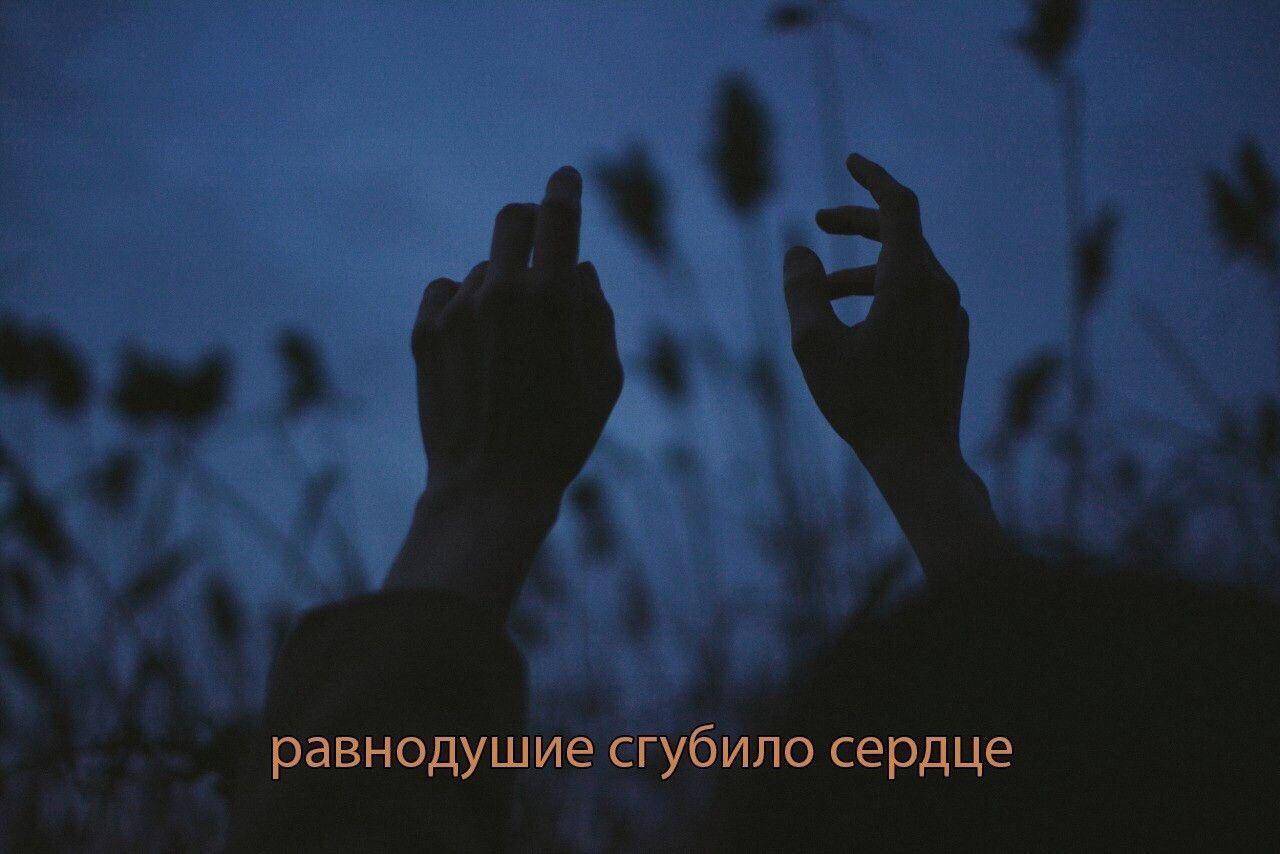Пин от пользователя Малютина Ирина на доске Любовь в 2020 ...