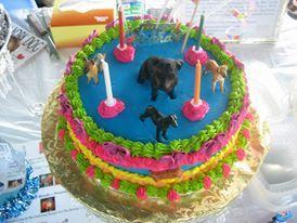 Neon Doggie Cake