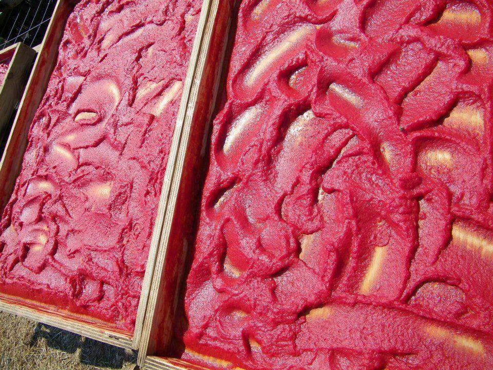 Polpa di pomodoro a pezzi al naturale - ricette light ...