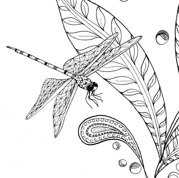 Adult colouring pages of dragonfly and flower par TheTangledPeacock ...