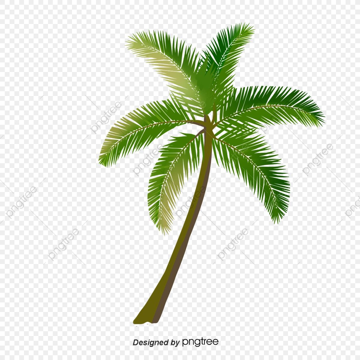 Cartoon Green Palm Tree Nature Clip Art Hand Painted Png Transparent Clipart Image And Psd File For Free Download In 2021 Cartoon Palm Tree Palm Tree Png Palm Trees