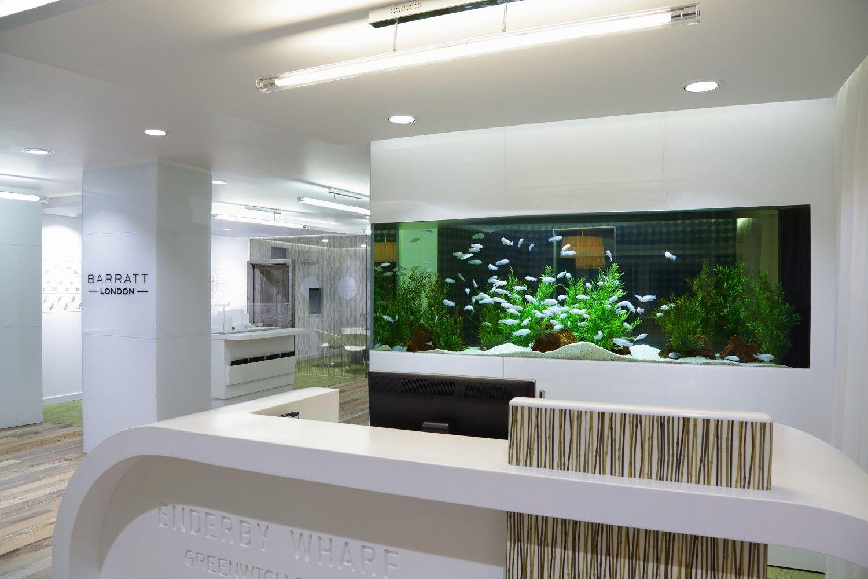 Beau Barratt Homes Office Aquarium   London, UK
