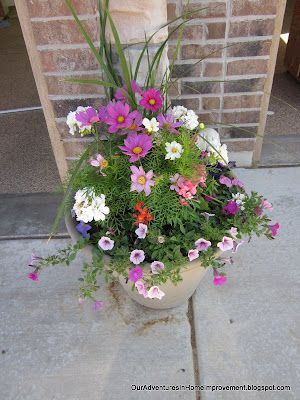 Our Adventures In Home Improvement Reluctantly Accepting That Summer Is Ending Container Flowers Flower Pots Cosmos Flowers