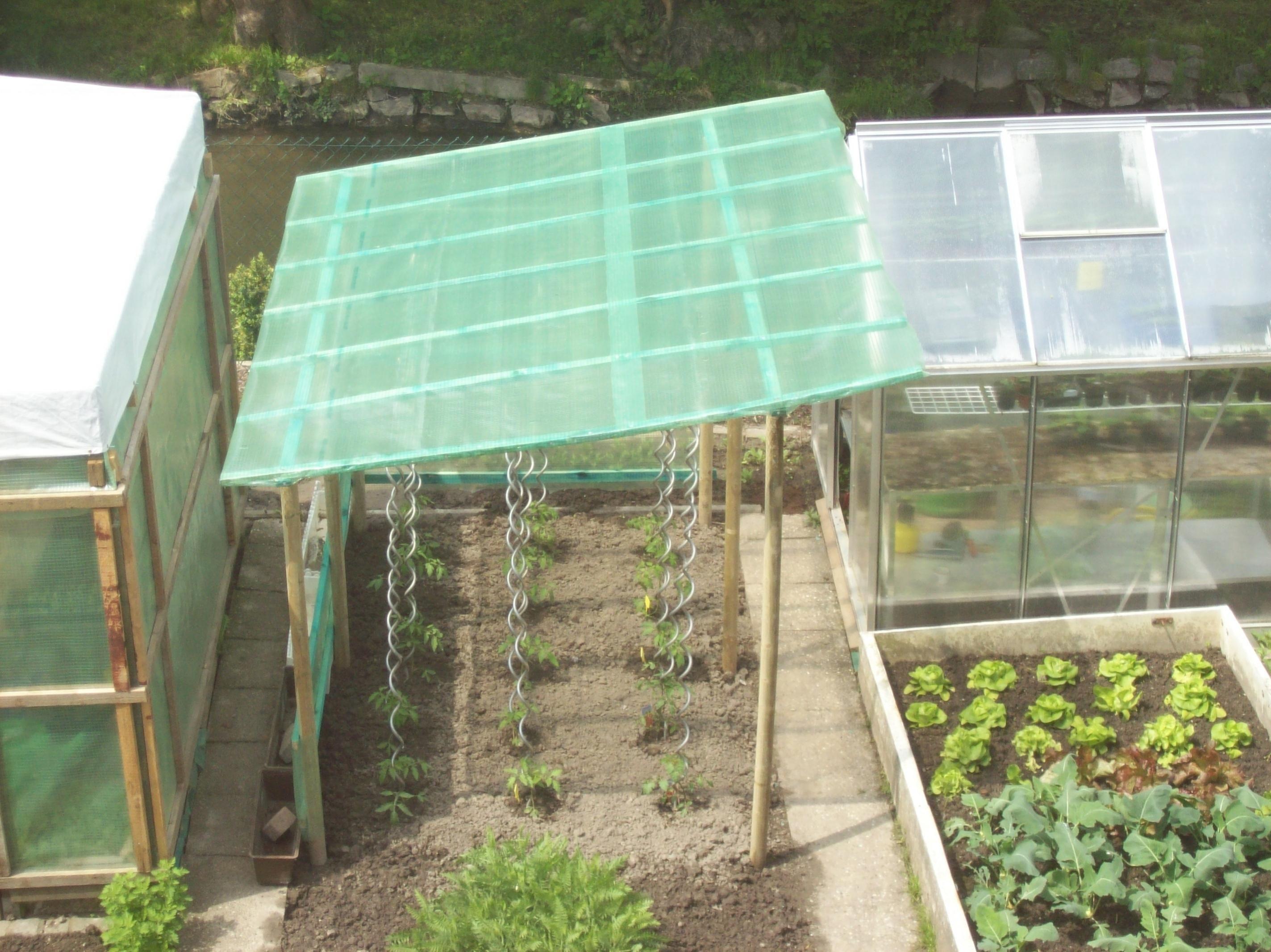 bildergebnis f r tomatenhaus selbst bauen garten pinterest tomatenhaus selbst bauen und. Black Bedroom Furniture Sets. Home Design Ideas