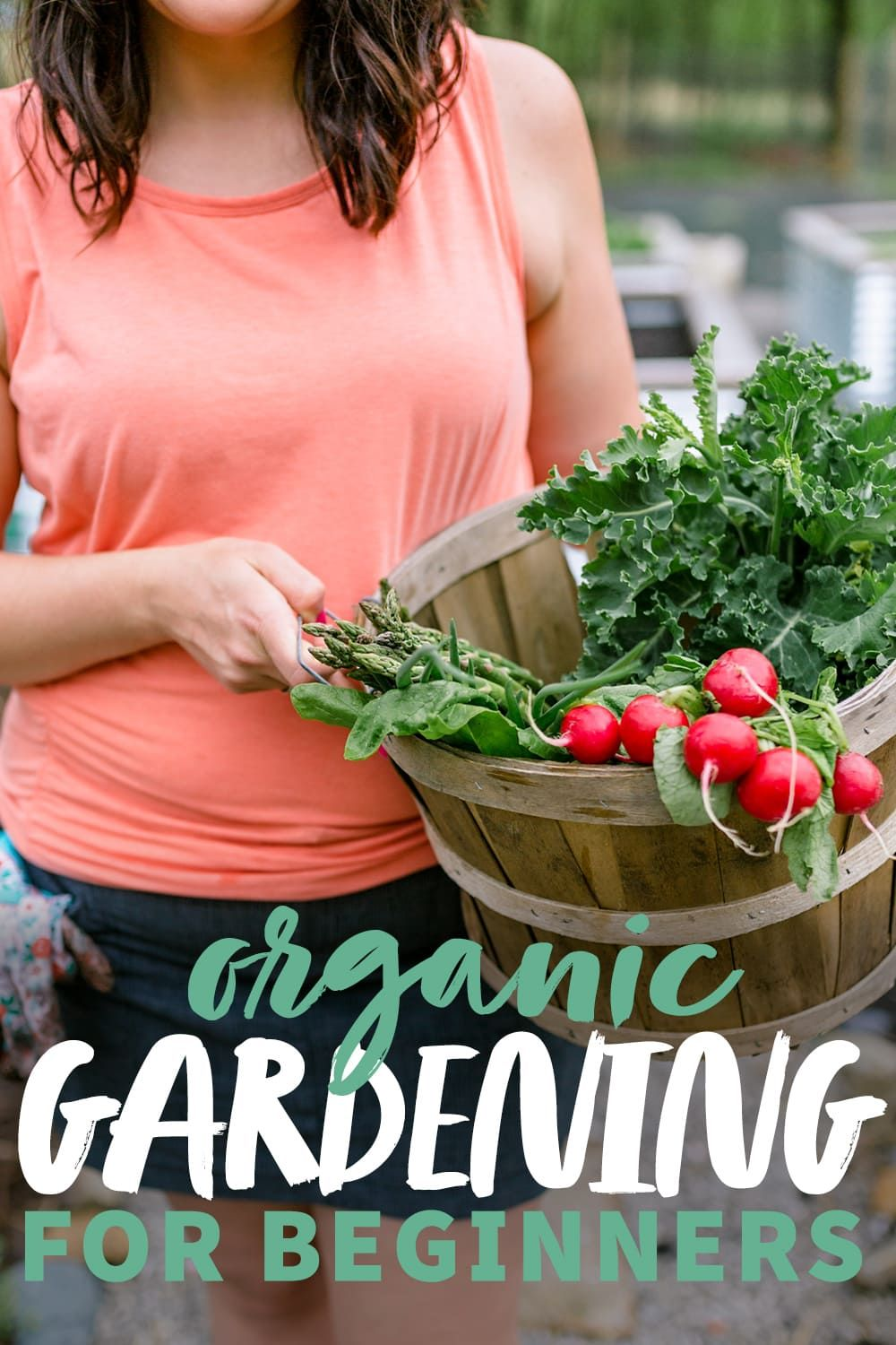 Organic Vegetable Gardening for Beginners Choosing What to Grow is part of Gardening for beginners, Vegetable garden for beginners, Organic vegetable garden, Organic vegetables, Vegetable garden, Growing organic vegetables - When you're ready to start growing your own food, this guide to organic vegetable gardening for beginners will walk you through buying plants or seeds