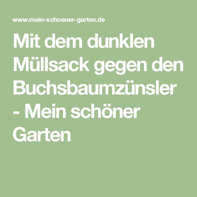 Mittel Gegen Schnecken Im Garten: Lesertipp Zum Buchsbaumzünsler: Wunderwaffe Müllsack