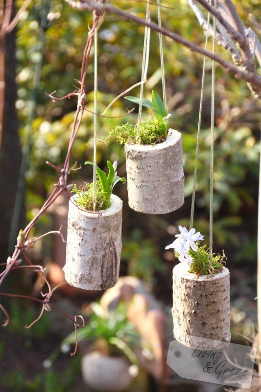 Hange Topfe Aus Holz Diy Flowers Fountains And Gardens