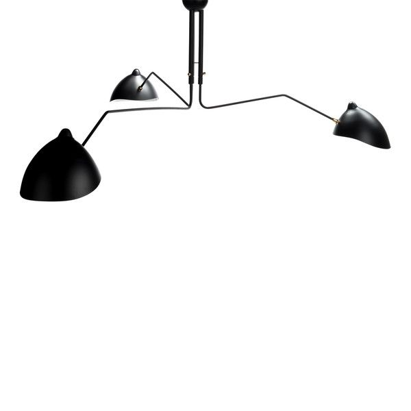 Fly Trap Ceiling Mount Lamp | Ceiling lights, Pendant lamp, Lamp