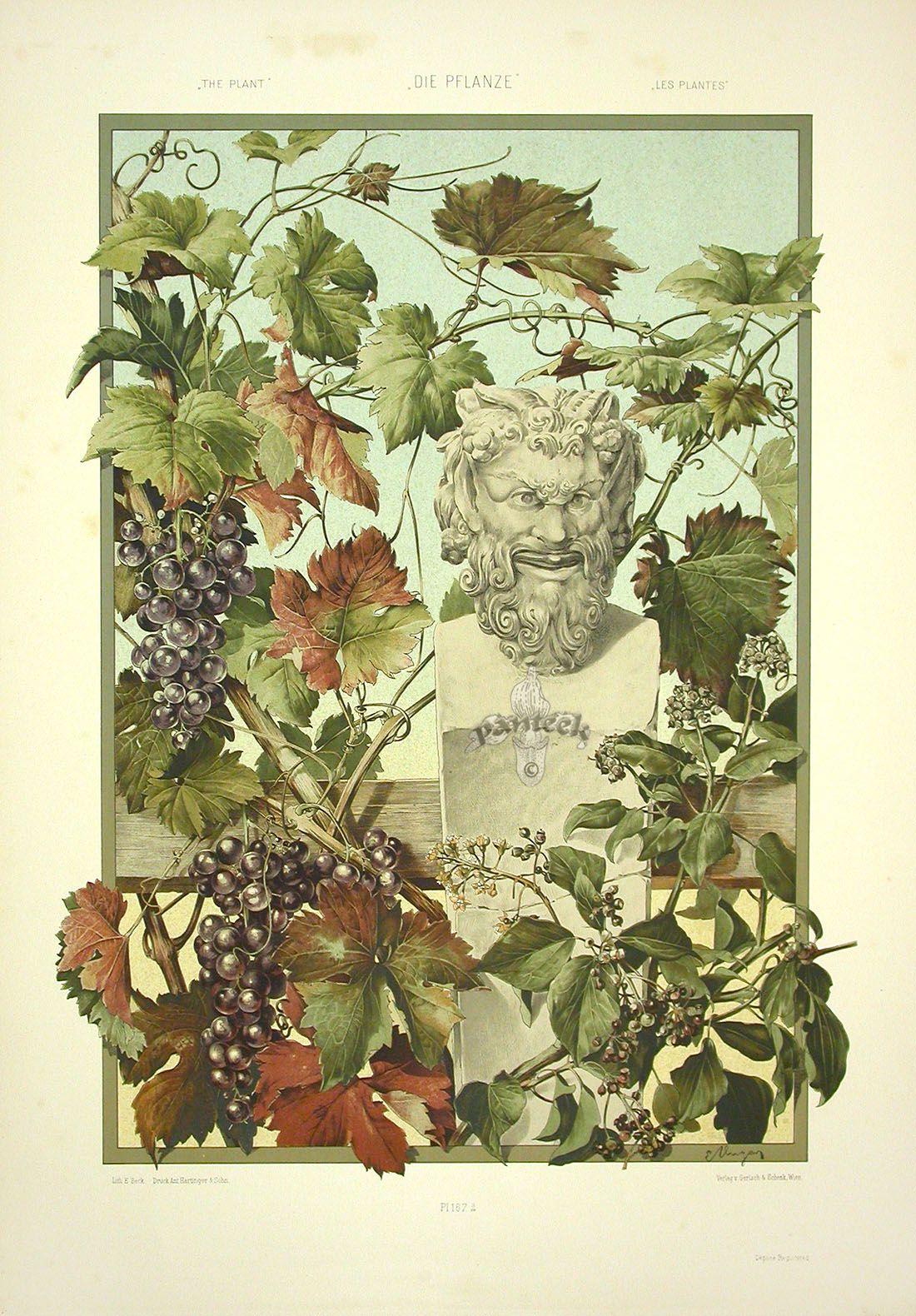 Anton Seder. Art Nouveau Prints . Обсуждение на LiveInternet - Российский Сервис Онлайн-Дневников