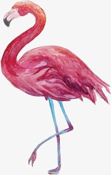 Flamingos Flamingo Clipart Cartoon Png Transparent Clipart Image And Psd File For Free Download Flamingo Autumn Painting Pink Birthday