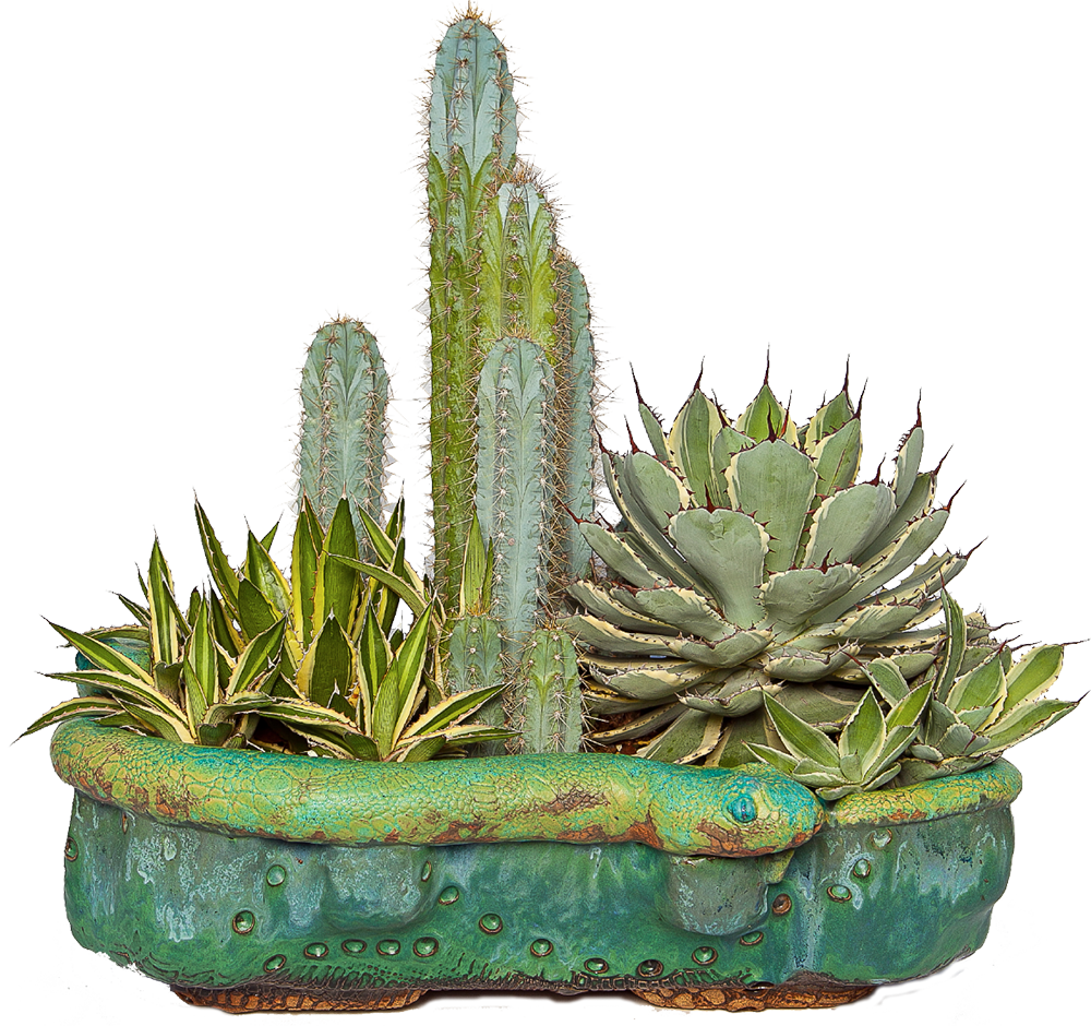 Pin On Cool Planters 400 x 300