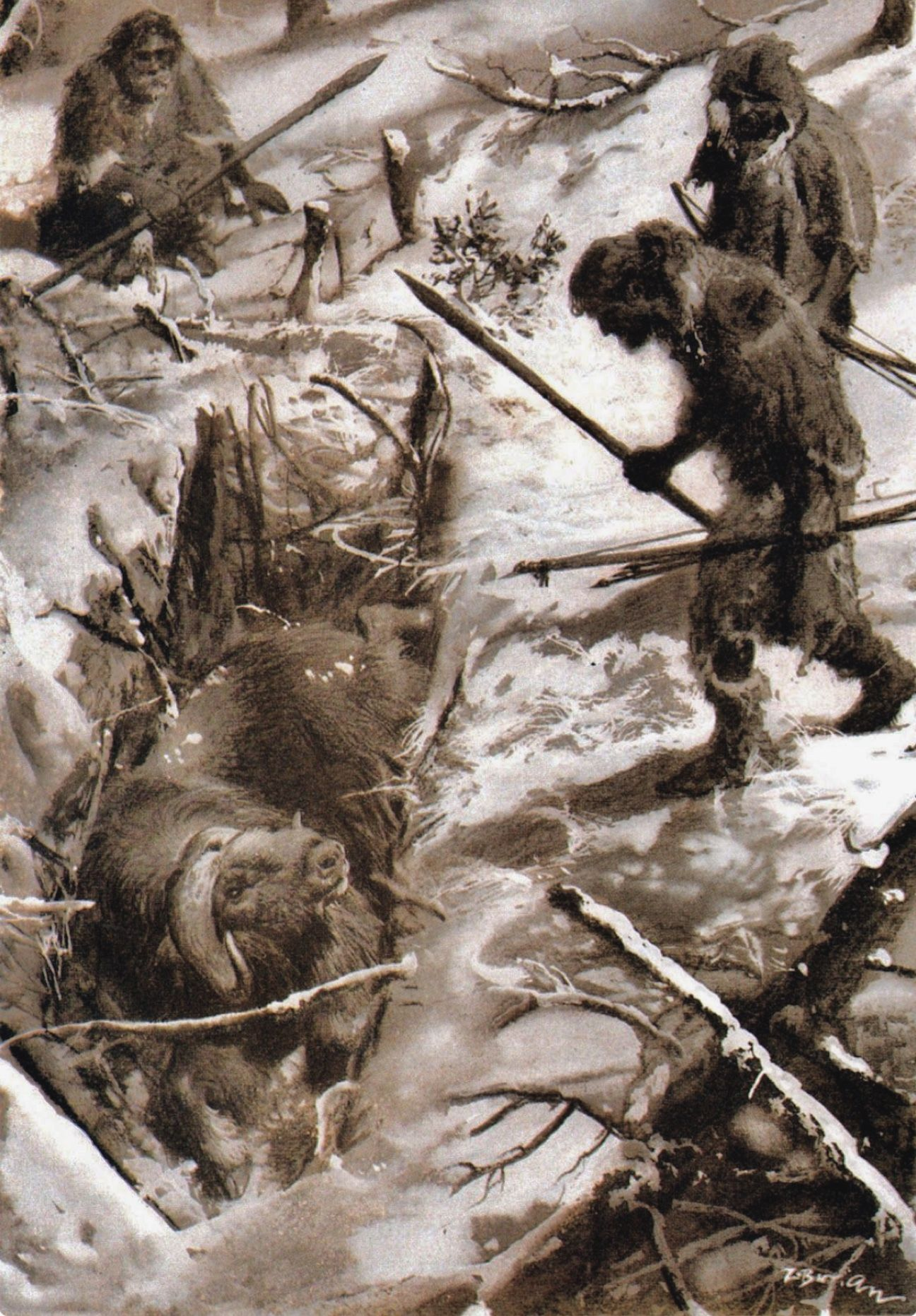 Ice Age Hunters Approaching A Woodland Musk Ox They Have