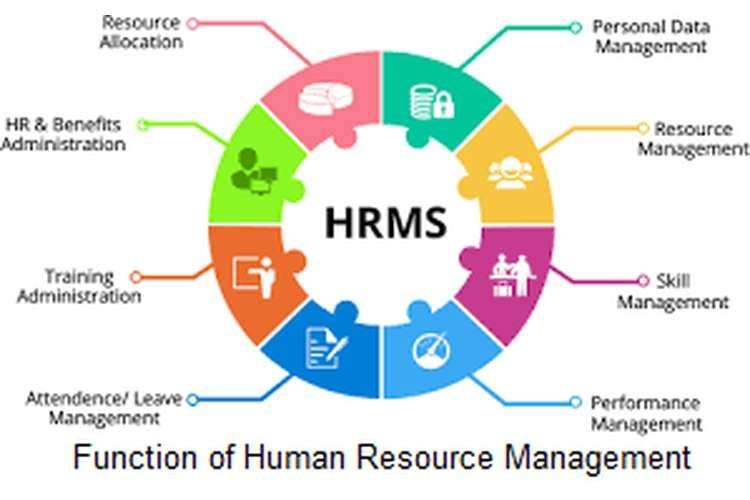 Function Of Human Resource Management System Resources Dissertation Topic In