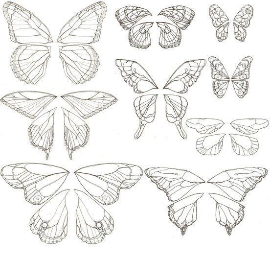 Photo of Disegni farfalla #half_butterfly_tattoo – Disegni farfalla #h … –  Disegni a f…