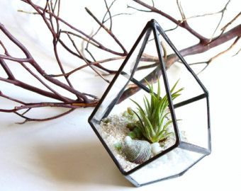 Small Geometric Terrarium, Air Plant Glass Terrarium, Glass Planter, Office  Decor, Stained