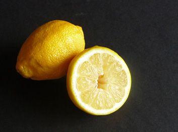 Portrait of a Lemon by jfhaugen