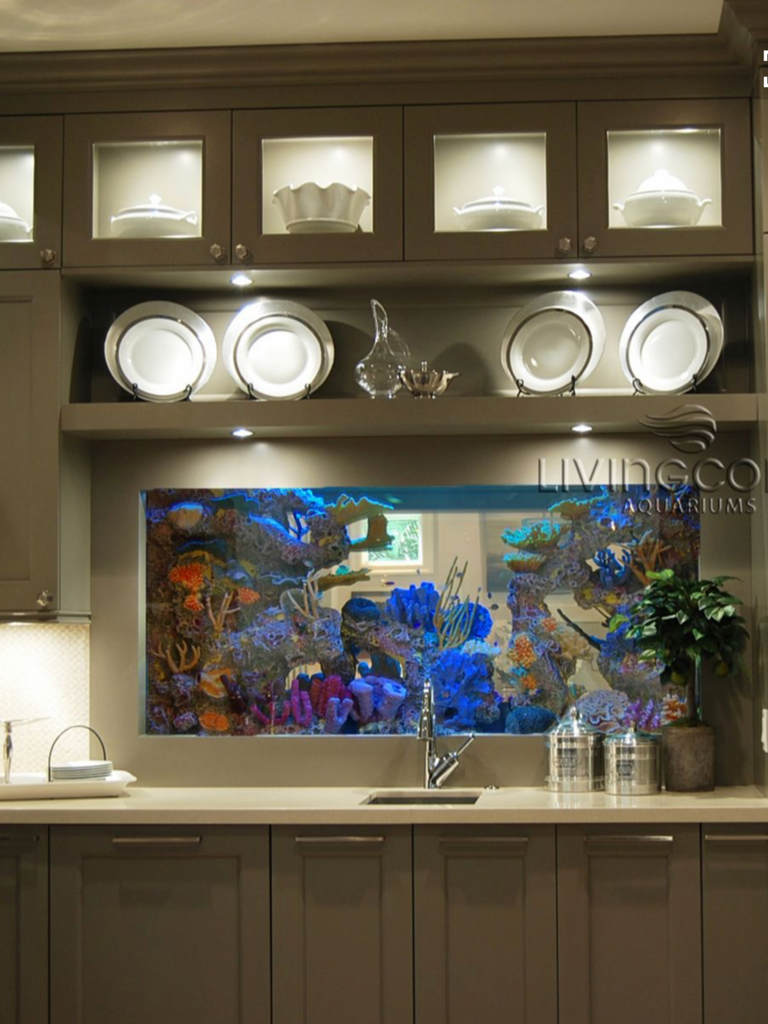 Home Aquarium Design Ideas: Kitchen Aquarium