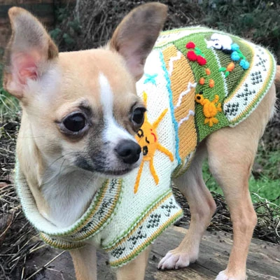 Size 2 Hand Embroidered Peruvian Dog Jumper Cream And Green 24cm My Chi And Me Dog Jumpers Dog Sweaters Dog Supplies