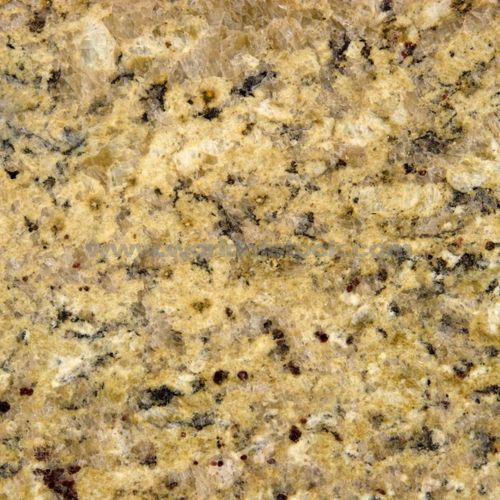 Venetian Gold Granite All Of My Countertops- Love It