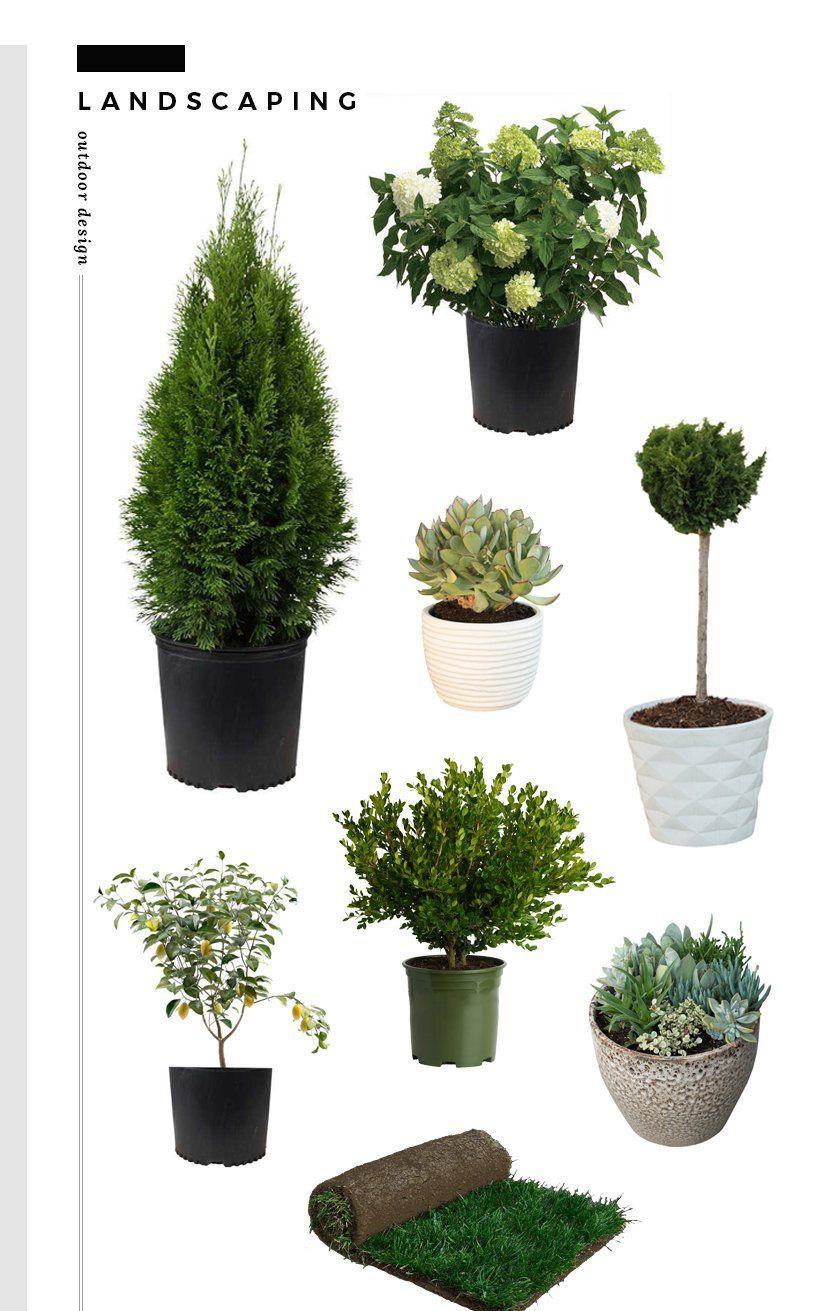 Green Room Garden Design: Backyard Landscaping Design