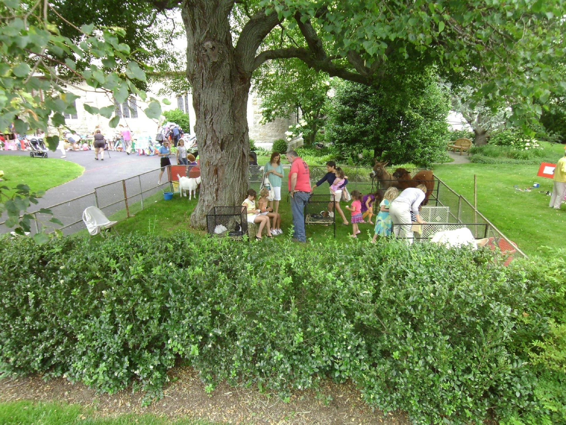 At the Canterbury Fair, Rumson NJ We