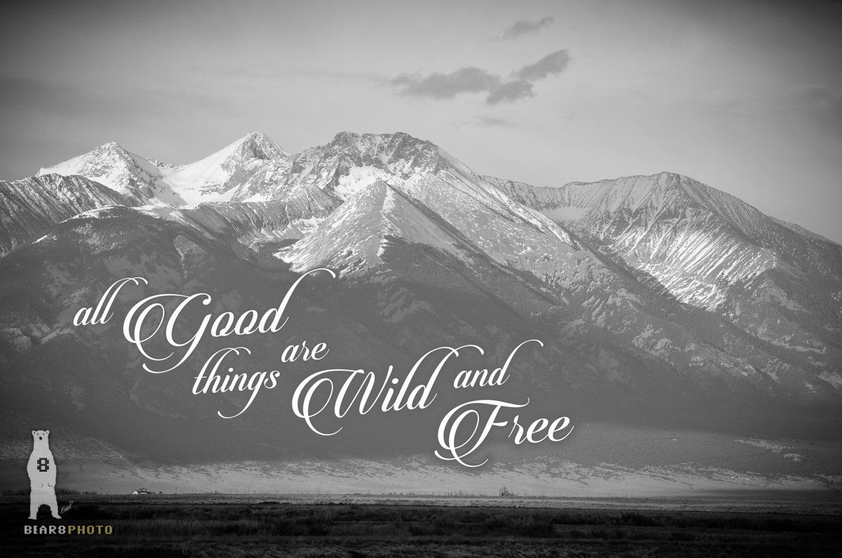 Wild and Free Quote Print, Rustic Western Decor, Black and
