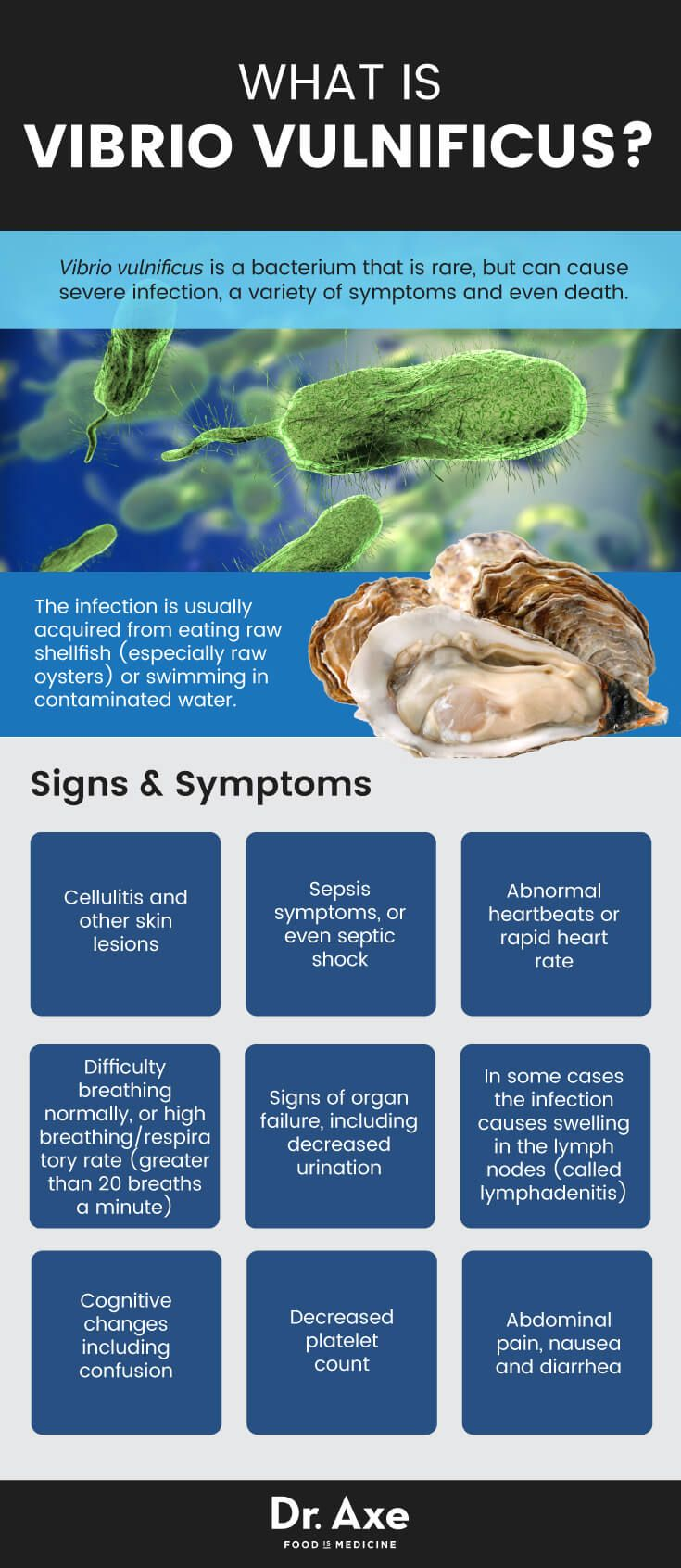 What is vibrio vulnificus- Dr. Axe