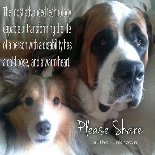 Service Animals Animal Quotes
