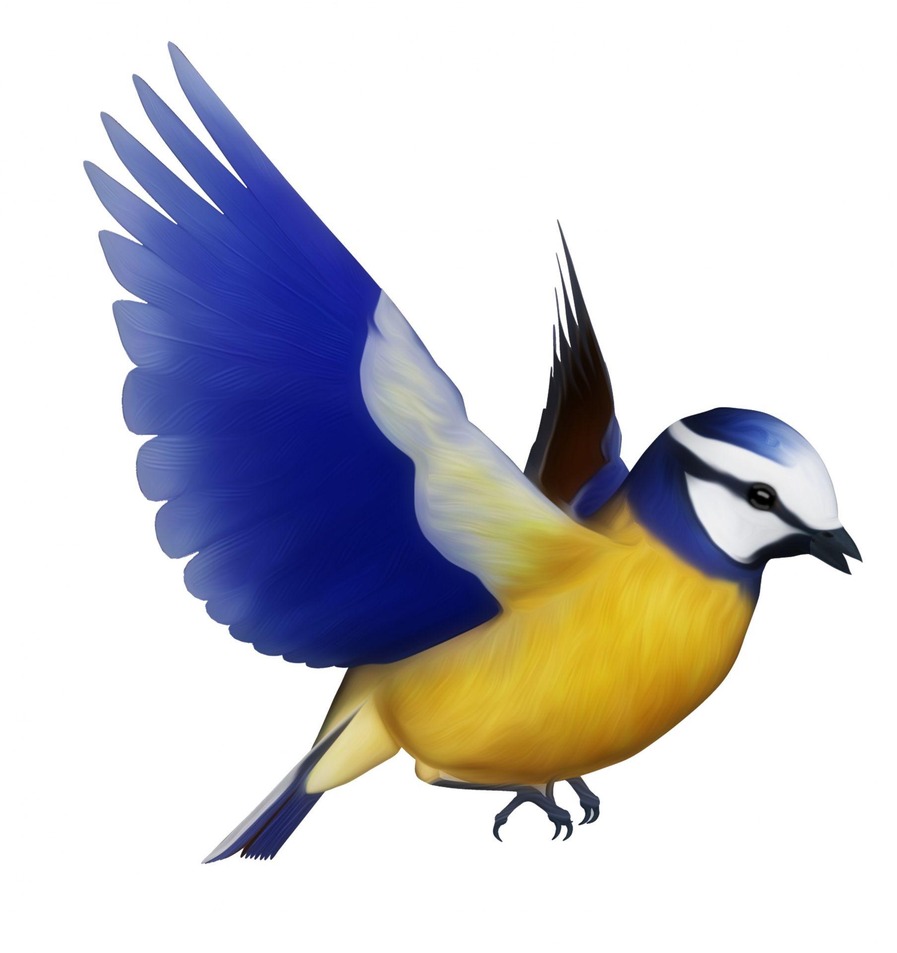 free bird pink clip art of bird clipart 8728 u2014 clipartwork wood