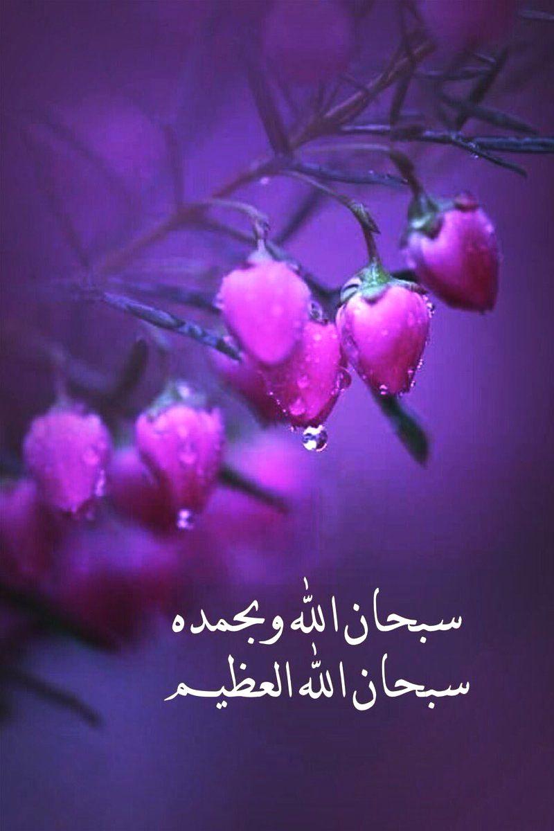 سبحان الله وبحمده سبحان الله العظيم Islamic Quotes Quran Beautiful Islamic Quotes Islamic Love Quotes