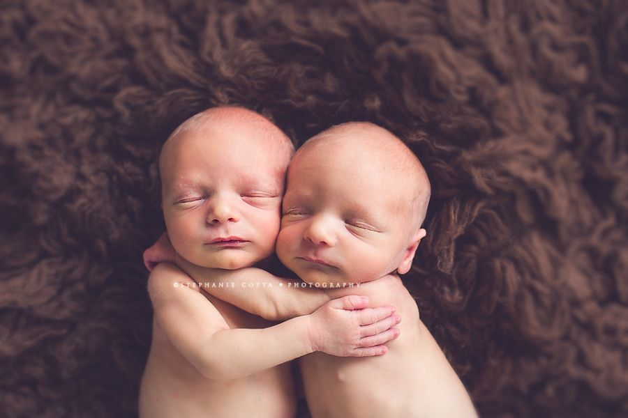 Stephanie cotta photography stephanie cotta photography blog · newborn twinsphotography