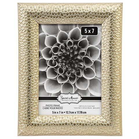 Bulk Special Moments Sahara Silver Plastic Frames, 5x7 in. at ...