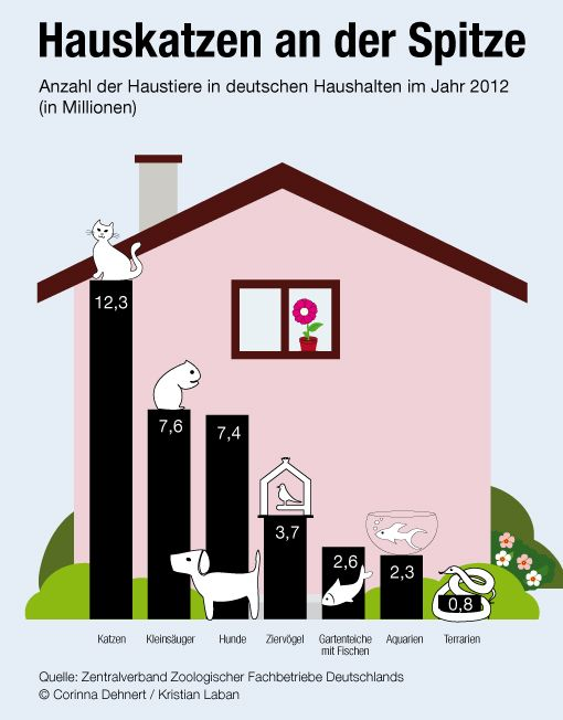 Wir können Infografiken German language learning, German