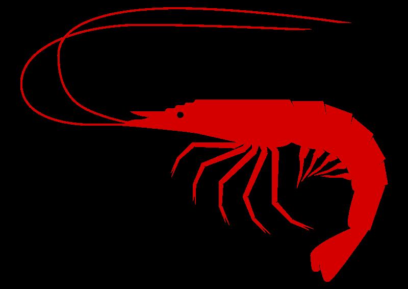 shrimp clip art free swimmers pinterest clip art free clip rh pinterest com Fish Sandwich Clip Art Clip Art Black and White Fall