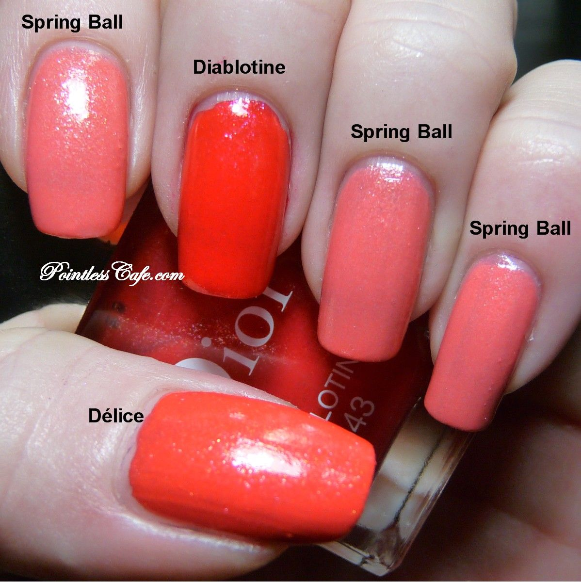 Dior Spring Ball 343 and Dior Princess 553 - with Délice and ...