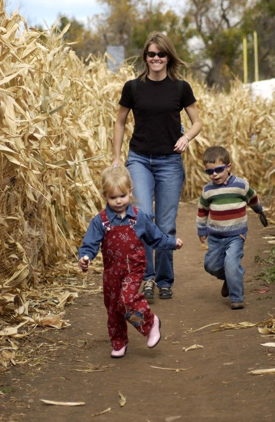 Visit Canton Nc And Find Your Way Through The Cold Mountain Corn Maze Www Themaize Com Fort Ticonderoga Fall Fun Ticonderoga