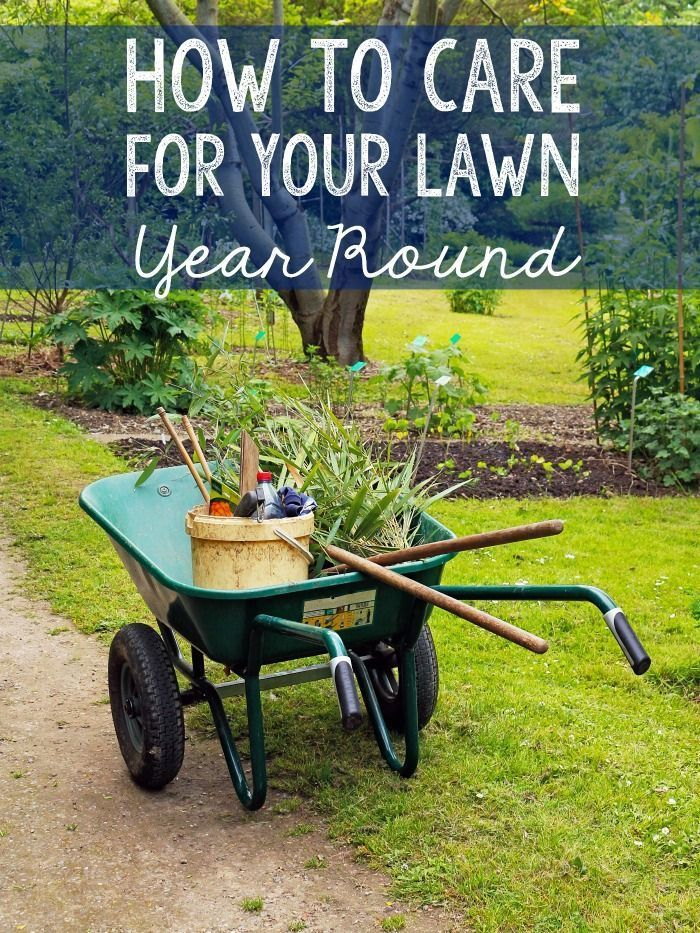 How To Care For Your Lawn Year Round Sprinklers Pinterest And Sprinkler