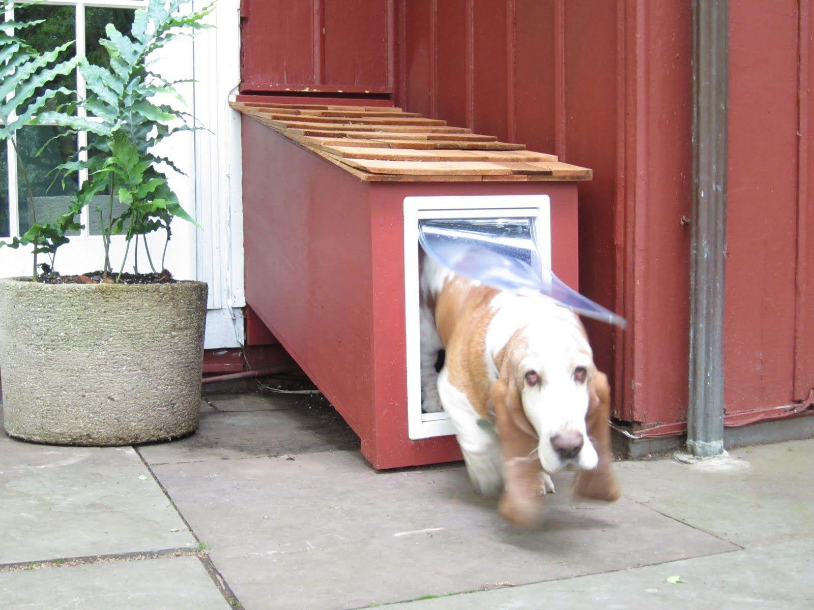 Doggie Door Tunnel Love It Dog Door Cat Enclosure Pet Care Dogs