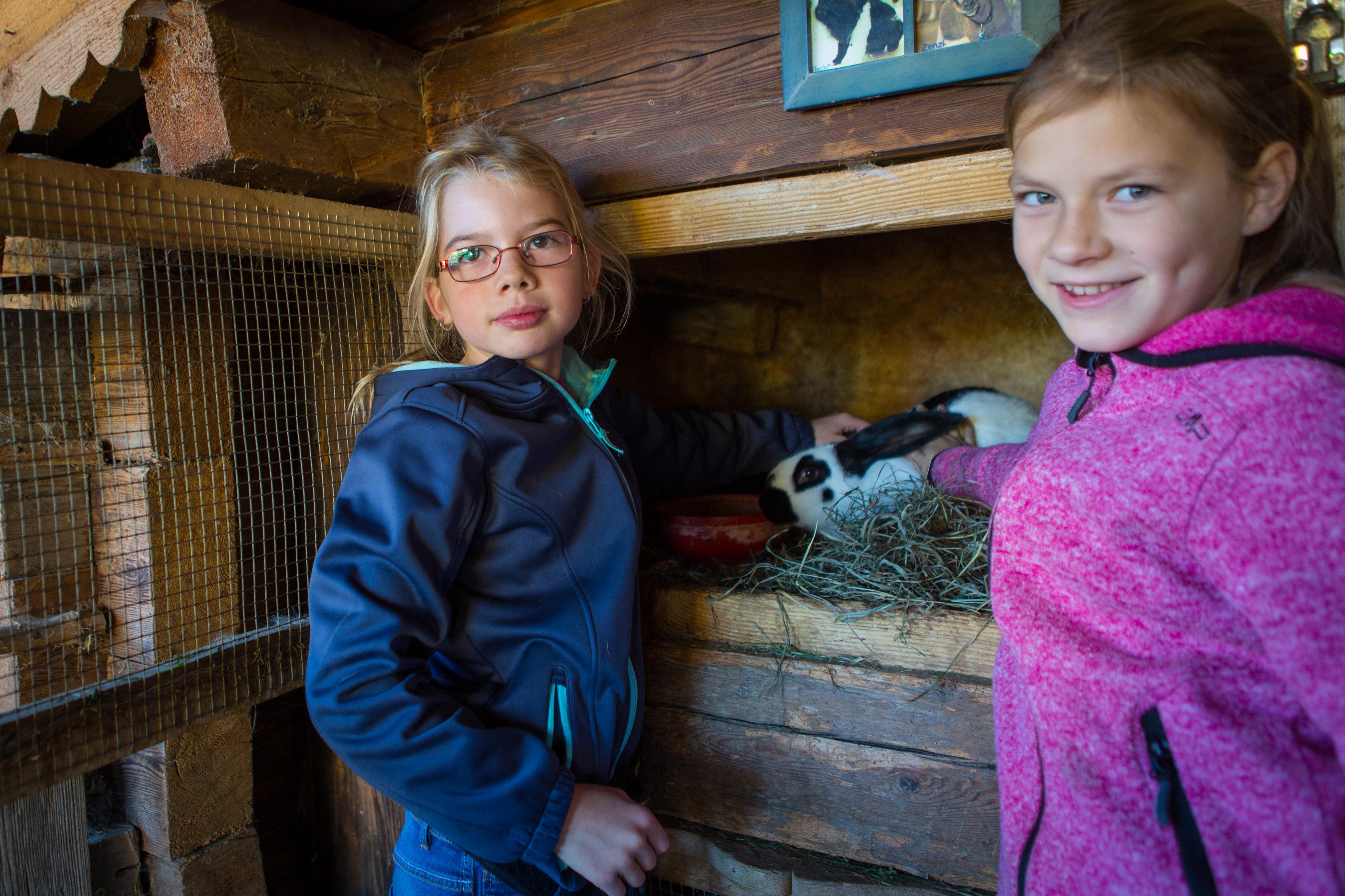 Der Streichelzoo ist ein Kinder-Magnet!  Alle weiteren Informationen zum Alpin Family Resort Seetal findet ihr unter: http://kinderhotel.info/kinderhotel/alpin-family-resort-seetal