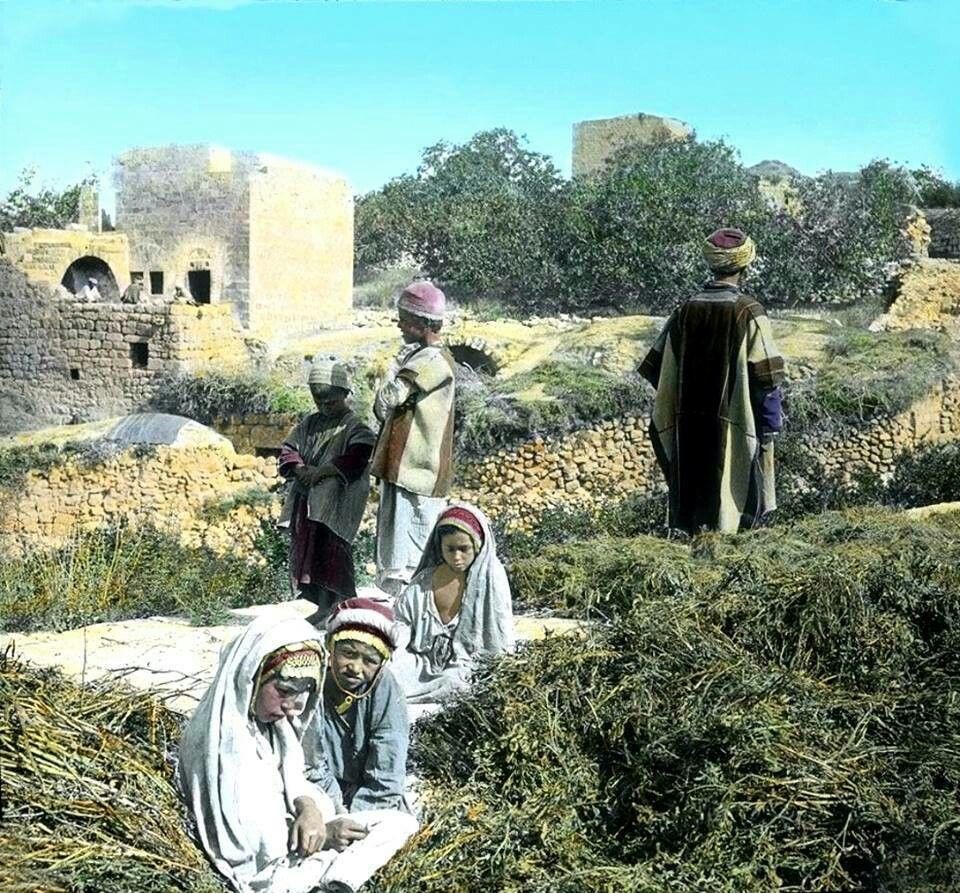 قرية بيتين قضاء مدينة رام الله 1920م بيت ين هي قرية فلسطينية تتبع محافظة رام الله والبيرة وقعت تحت الاحتلال الإسرائي Palestine History Old Pictures Palestine