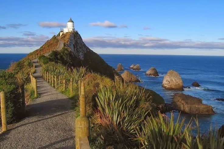 Nugget Point Lighthouse ,New Zealand