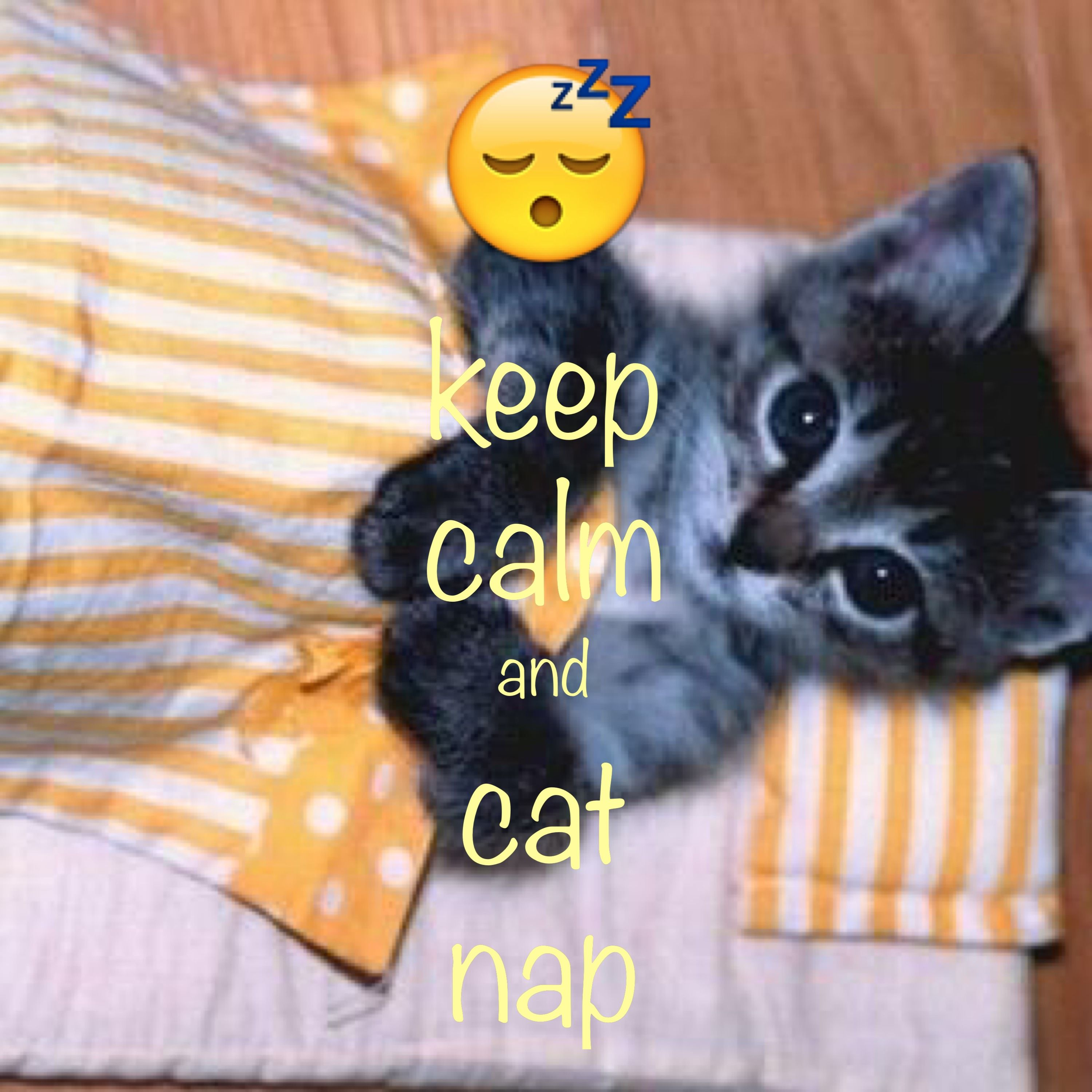 Keep Calm And Cat Nap Created With Keep Calm And Carry On For Ios